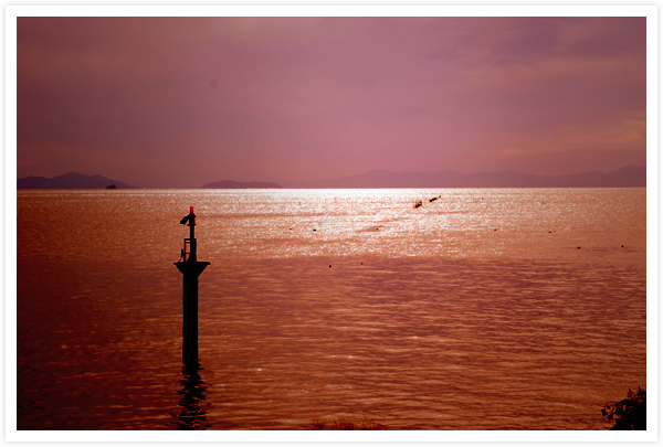 夕景の琵琶湖